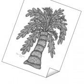 """Palm Tree"" Print"